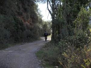 Camí Moliner