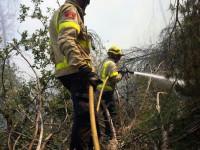 Bombers incendis forestals // Imatge dels Bombers