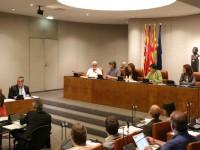 Ple extraordinari // Imatge cedida per la Diputació de Barcelona