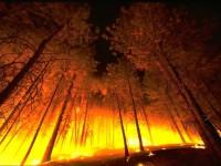 Risc incendi // Imatge del web de Wikimedia