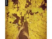 Abraçades gratuïtes en groc intens... // Foto: @evasol32