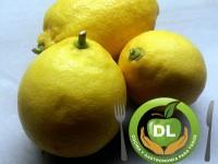 Qué sabes de…? Limones // Imatge DL cocina y gastronomia