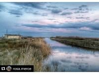 Port del Fangar, Delta de l'Ebre (@rosa.merce)