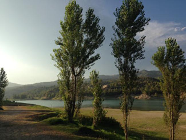 L'ACA destinarà més de 7 milions d'euros en la restauració i recuperació dels boscos de ribera