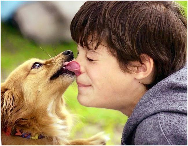 animalment nens i gossos-1