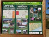 Passejades i excursions amb gossos per la zona i tot Catalunya